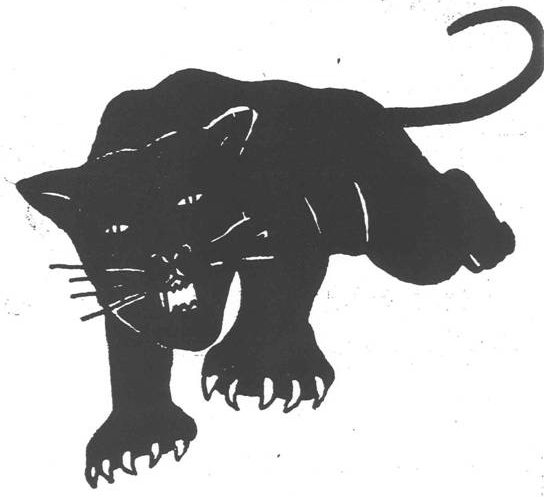Veterans Of The Civil Rights Movement The Black Panther Symbol